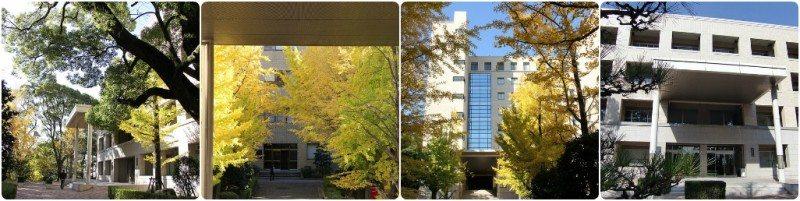 Đại học Kobe