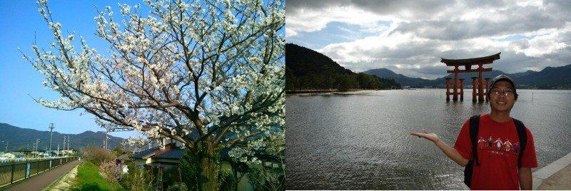 Nhật Bản qua lăng kính của Vũ Đình Hơn