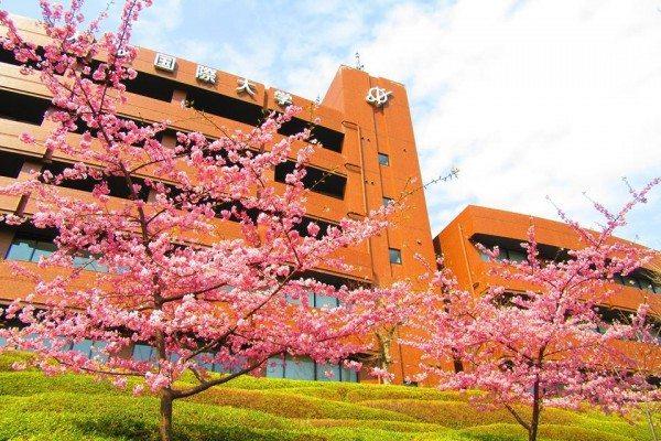 Đại học quốc tế Osaka – Bệ phóng tài năng trẻ