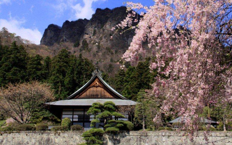 tìm hiểu học viện nhật ngữ nippon