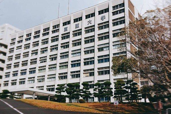 Đại học TouA – Chân trời rộng mở với nhiều cơ hội và thách thức